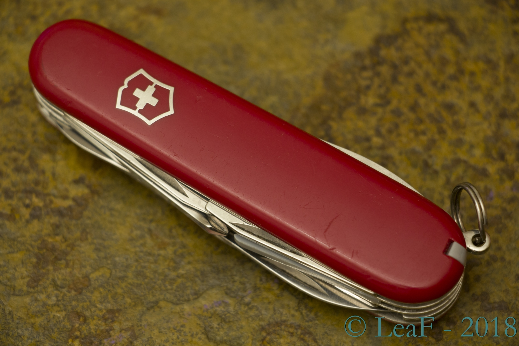 041 Explorer Leaf S Victorinox Knives Collection