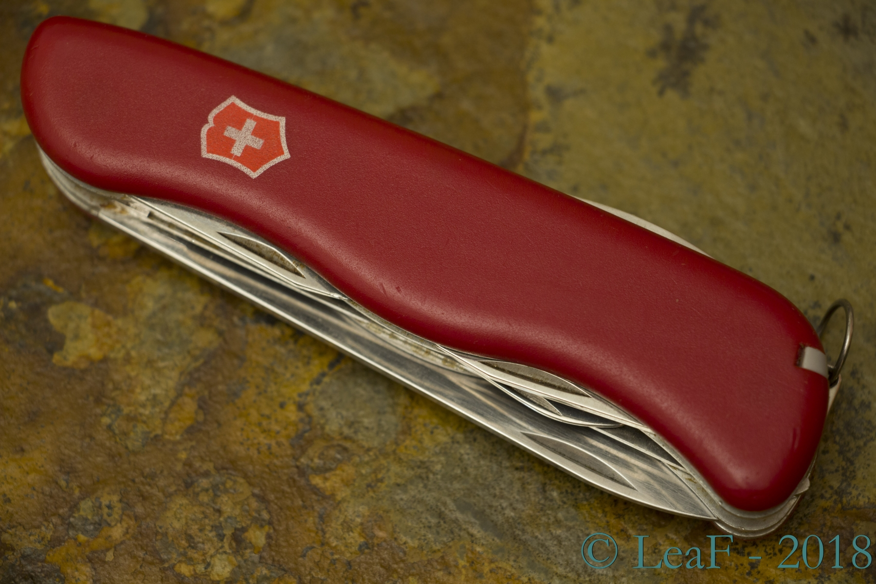 344 Outrider Leaf S Victorinox Knives Collection