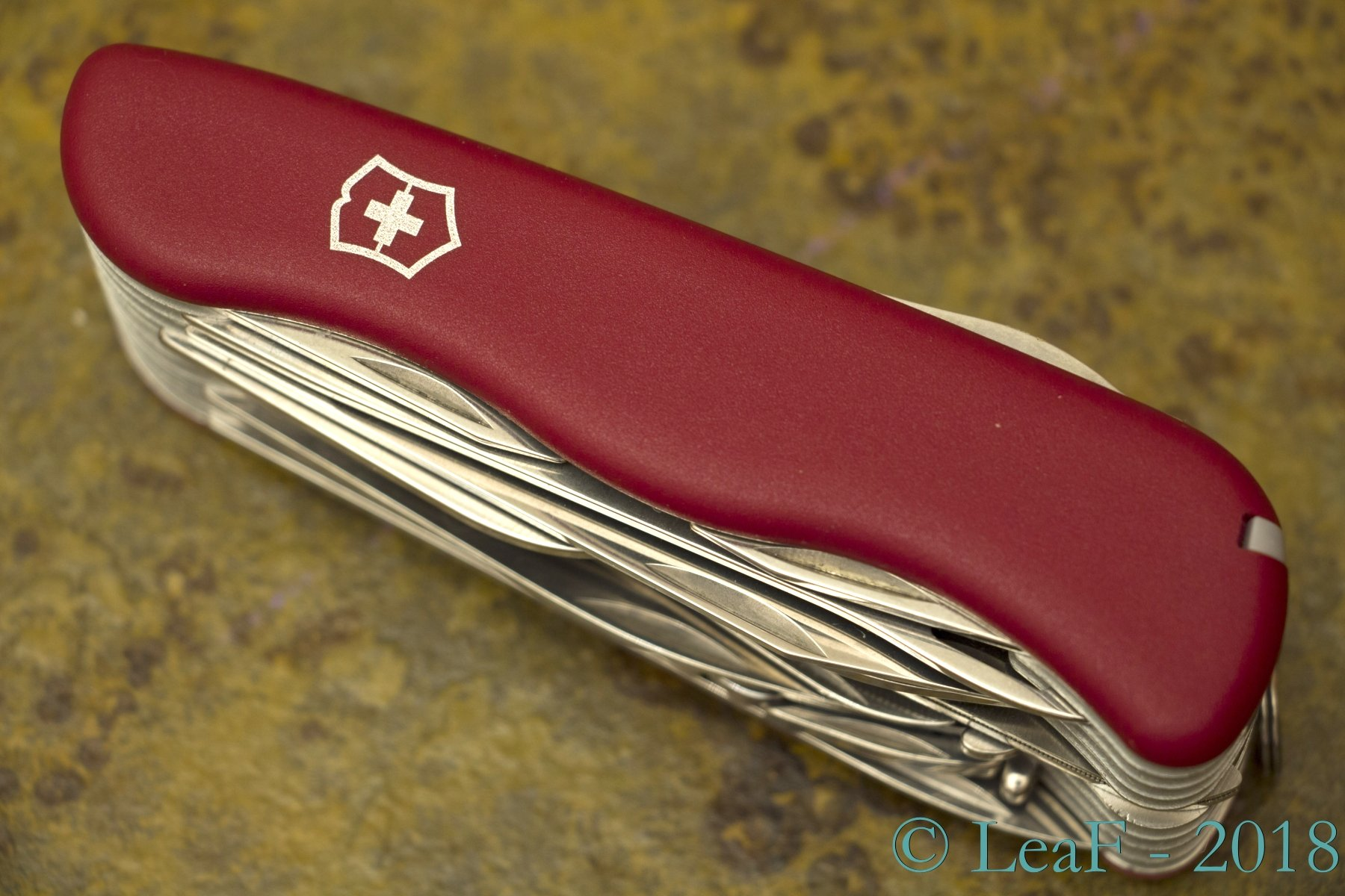 393 Workchamp Xl Leaf S Victorinox Knives Collection