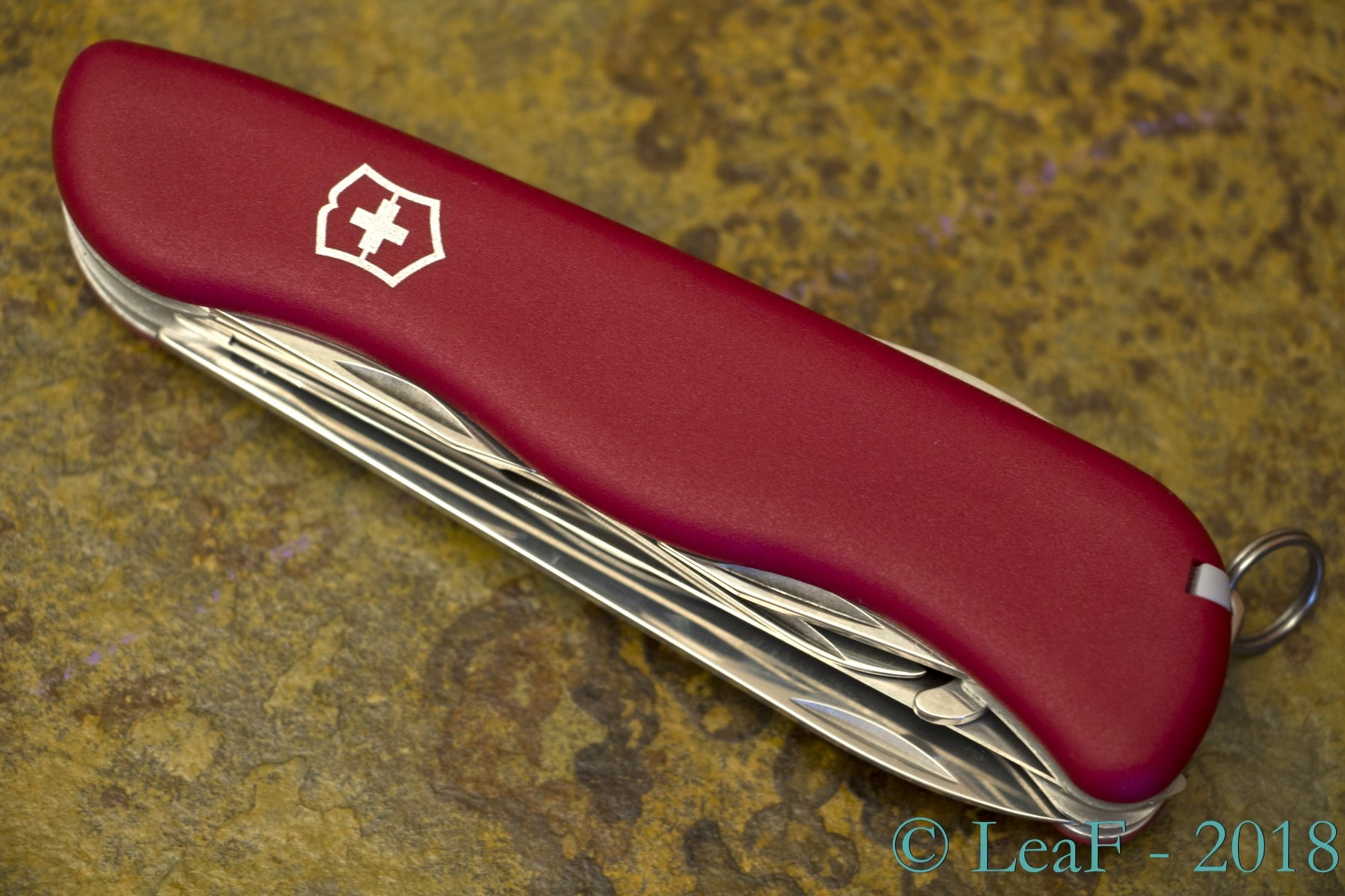 421 Outrider Leaf S Victorinox Knives Collection