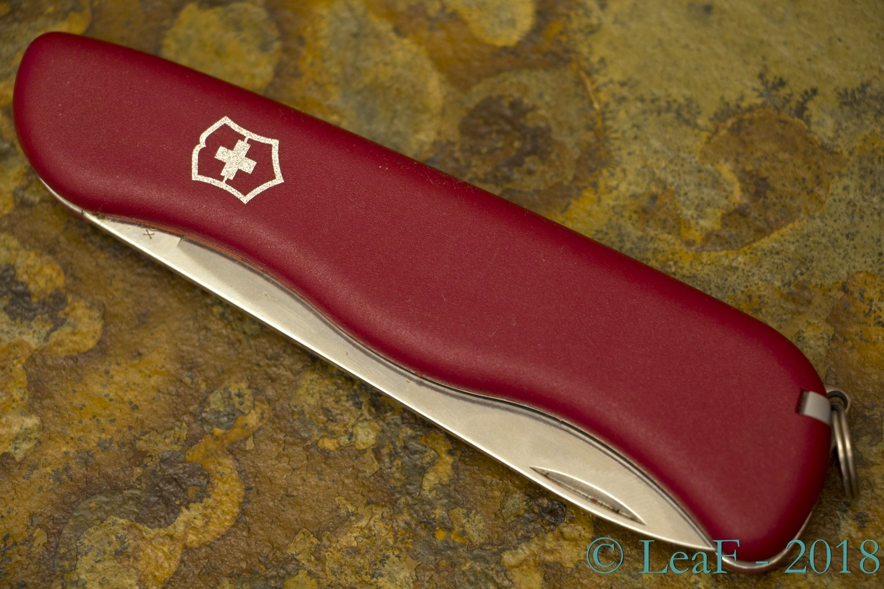 246 Alpineer Leaf S Victorinox Knives Collection