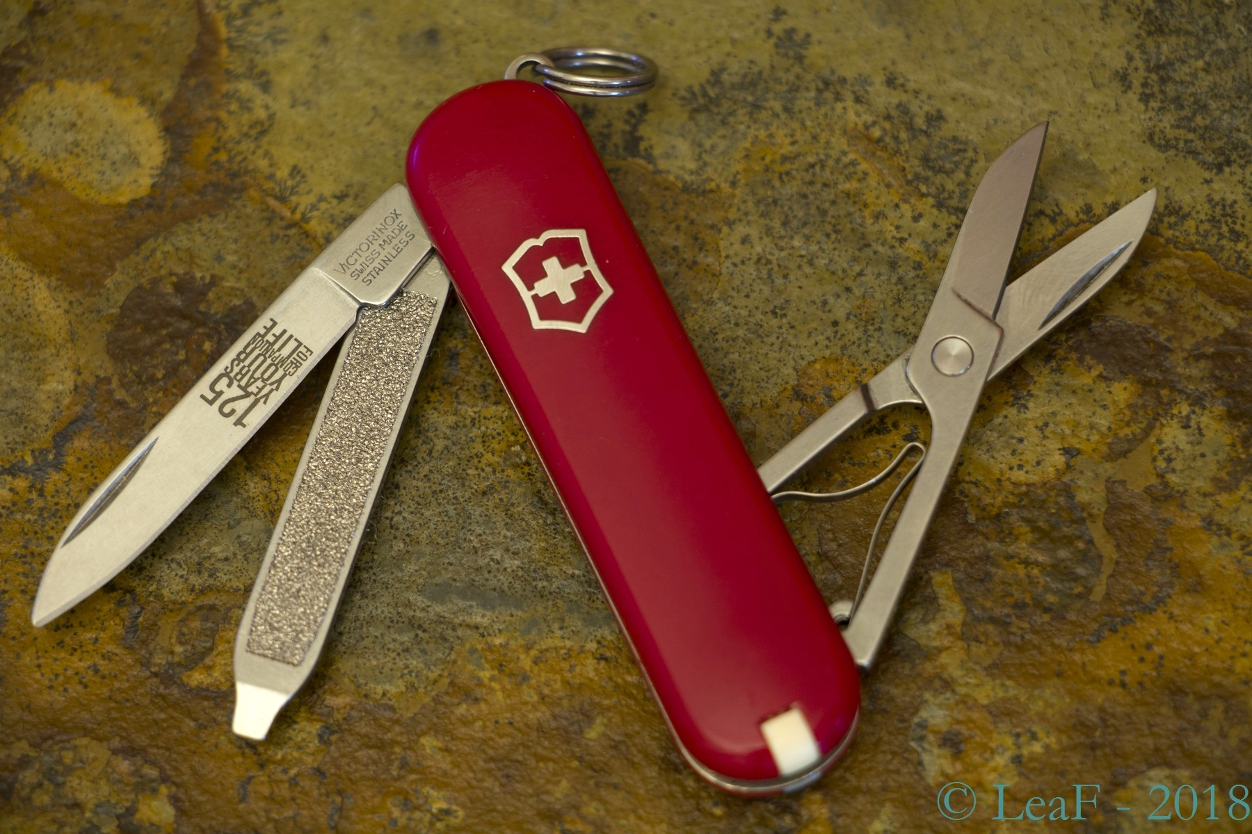 262 Classic Sd 125 Years Leaf S Victorinox Knives