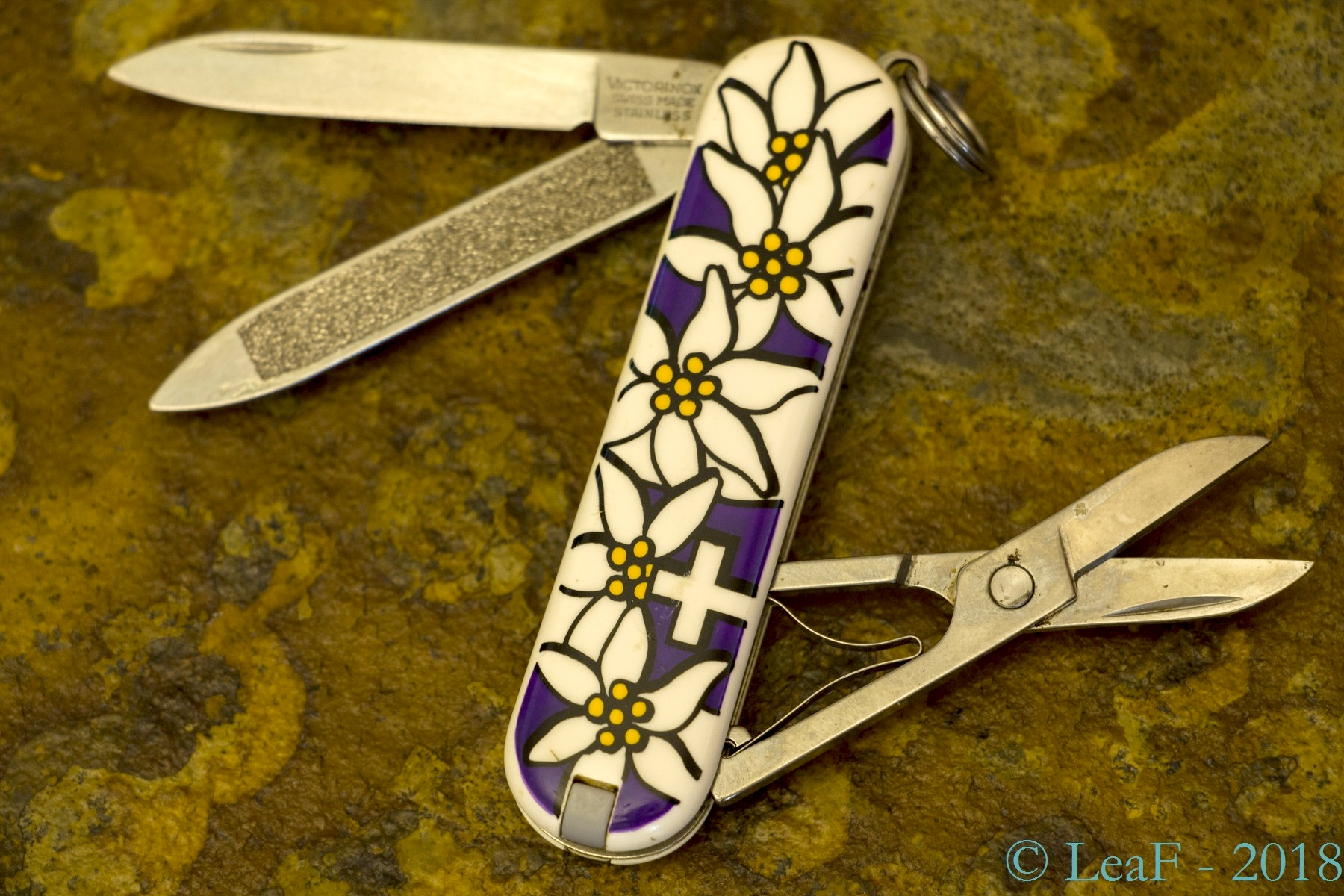 371 Classic Edelweiss Purple Leaf S Victorinox Knives