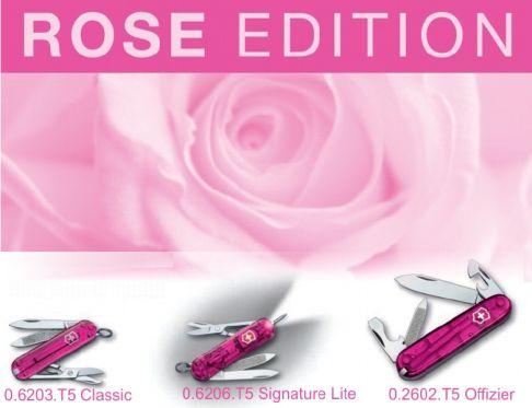 Rose_edition