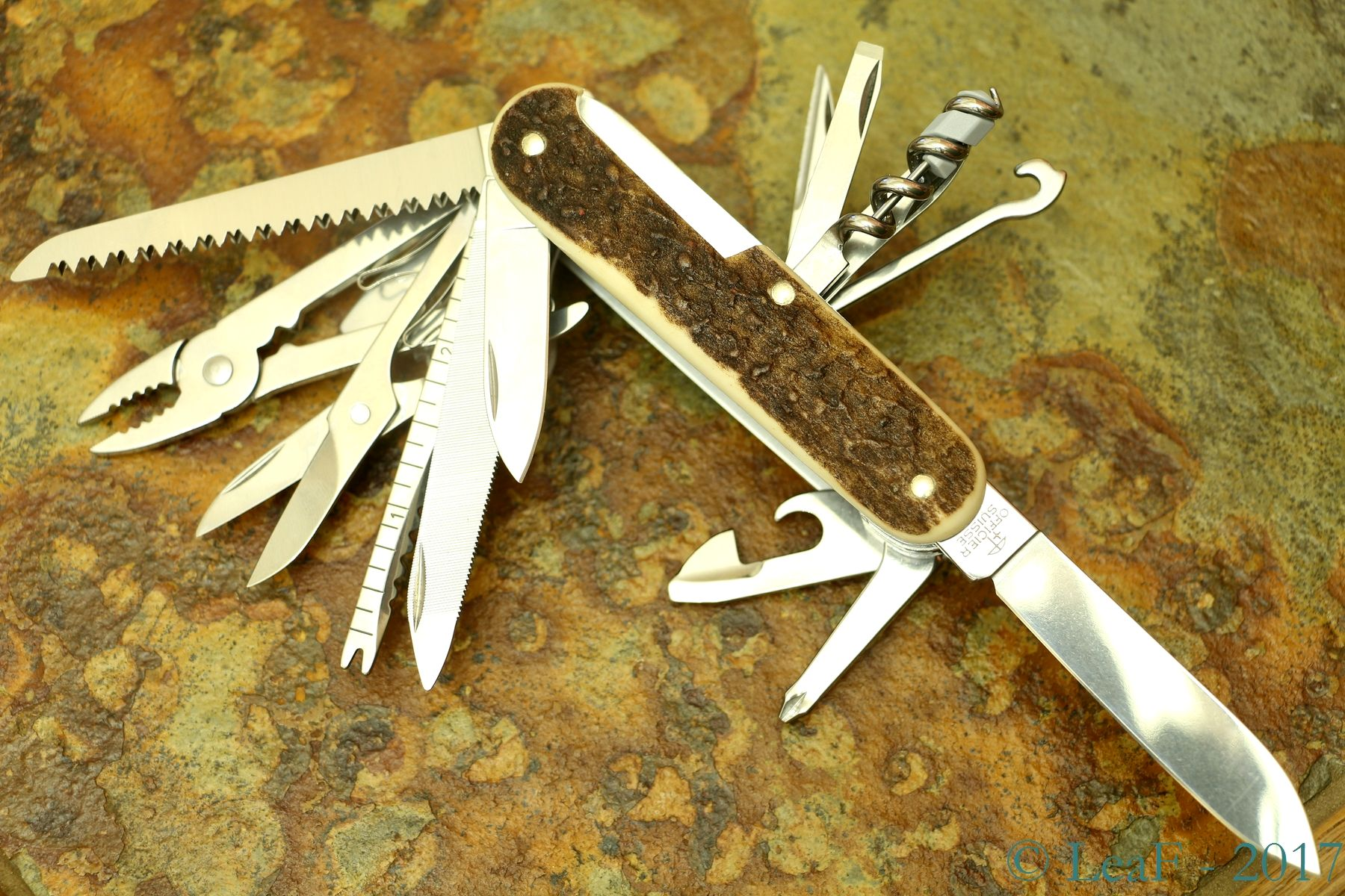711 Swisschamp Stag Horn Leaf S Victorinox Knives